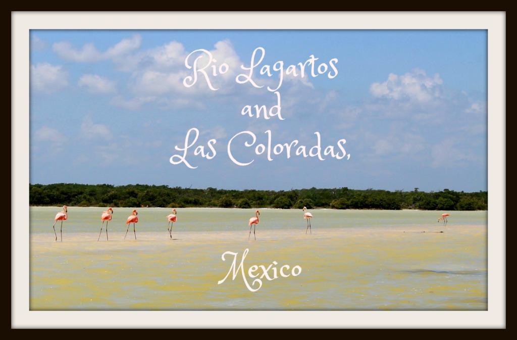 Rio Lagartos and Las Coloradas Mexico www.thedailyadventuresofme.com