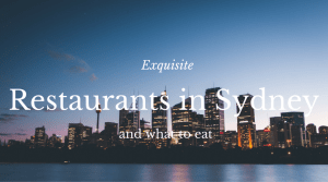 Exquisite Restaurants in Syndney www.thedailyadventuresofme.com