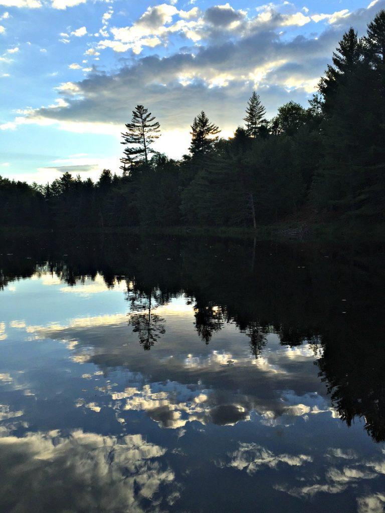 New England Road Trip Guide. www.thedailyadventuresofme.com
