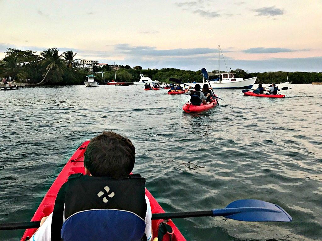 bioluminescent kayaking www.thedailyadventuresofme.com