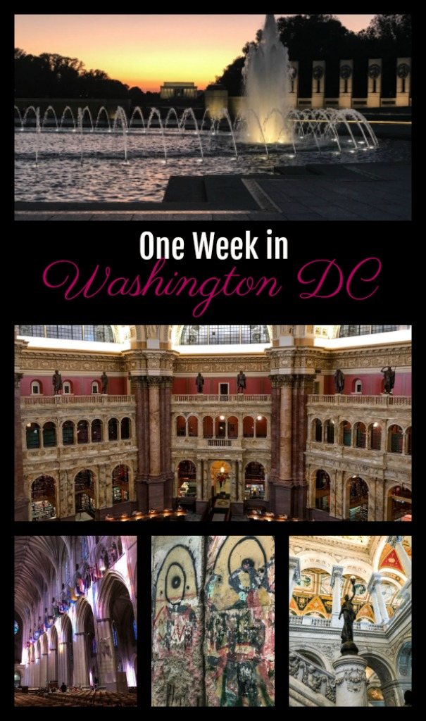 The best things to do in Washington DC! #USTravel #travelblog