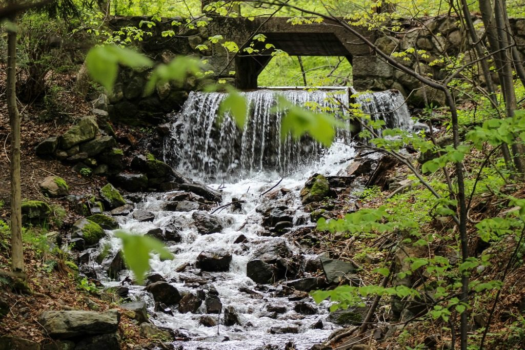 hiking trails near boston ma thedailyadventuresofme.com