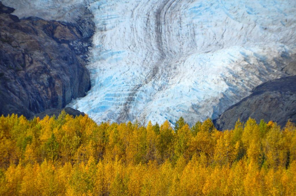 Kenai Peninsula in fall. Kenai National Park in Alaska.