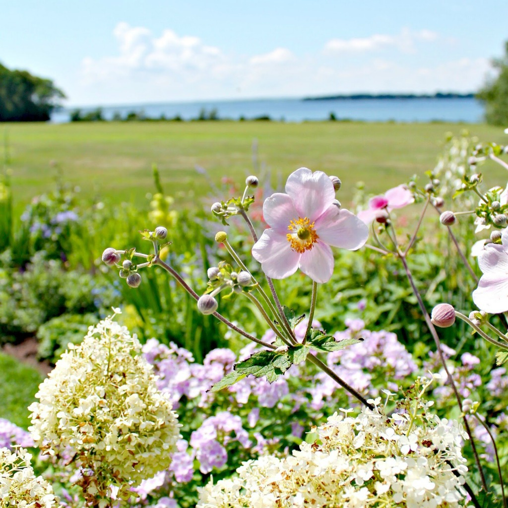 When to visit Blithewold's garden, some of New England's best gardens.