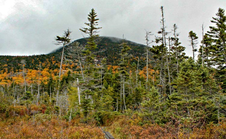 New England hiking trails, hiking trails in NH