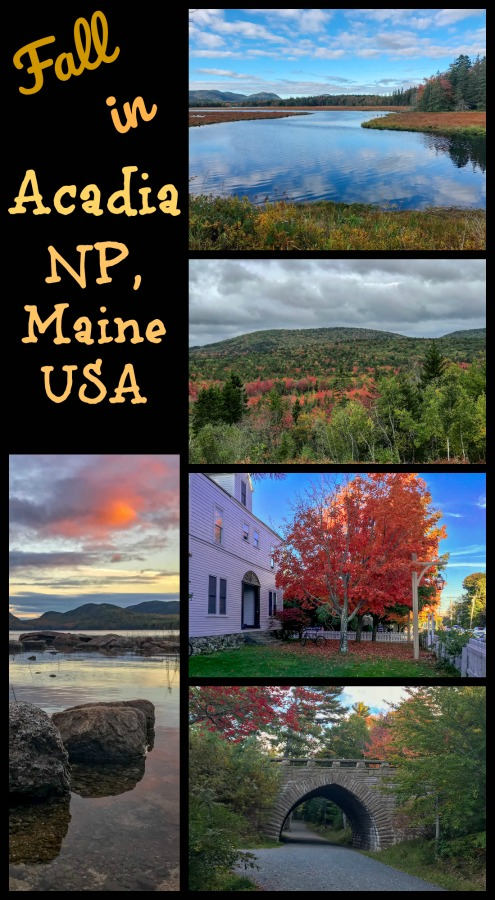 It's hard to beat autumn in New England. Maybe add some rocky cliffs, dense forests and perfect hiking. Acadia National Park in Maine, USA is the perfect spot to visit during fall. Read on for my 3-Day Acadia itinerary. #acadiainfall #acadiaMaine #acadiaNP #fallinMaine
