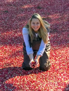 Get into a cranberry bog in Massachusetts