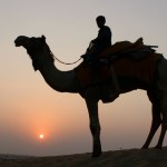 7 Tips for Visiting India for the First Time: How to Explore India Safely