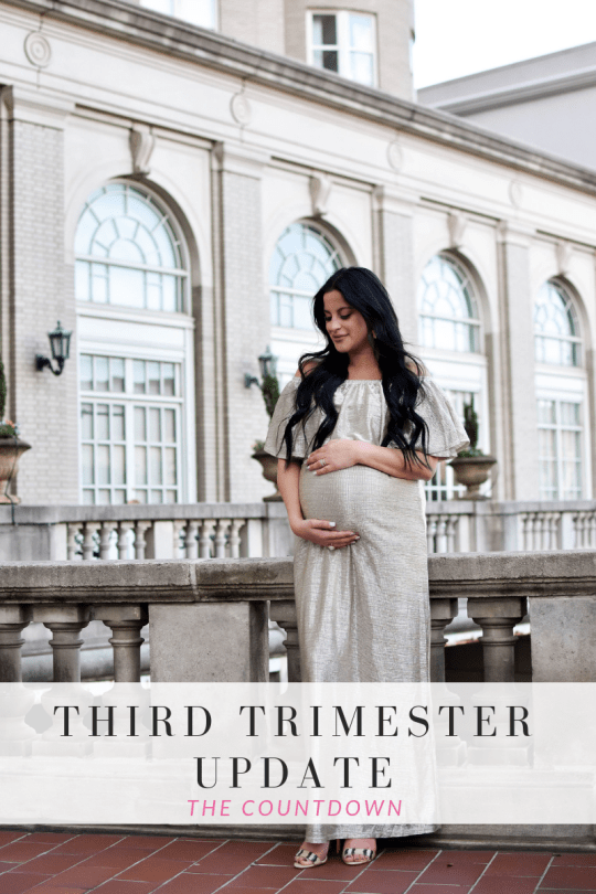Third Trimester Update: The Countdown