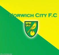Norwich City must give Alex Pritchard more of a chance