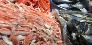 adulteration of sea food