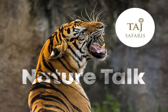 "TAJ SAFARIS ANNOUNCES ""NATURE TALK"" ON INTERNATIONAL TIGER DAY"
