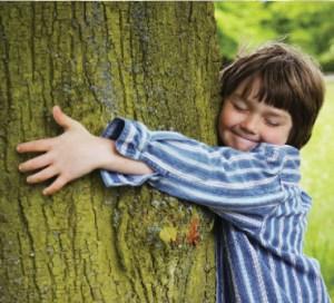 tree_hug