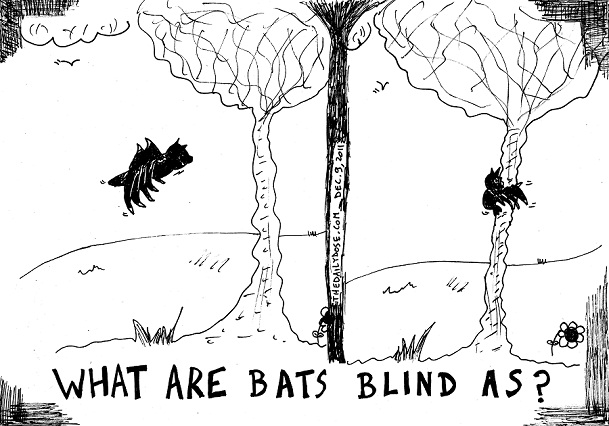 blind bat flying fasil comic strip by laughzilla for the daily dose