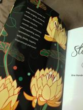Front Flap Of 'The Stonepeace Book Vol 1'