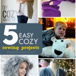 5 Easy Cozy Sewing Projects