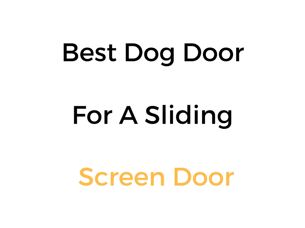 Best Dog Door For A Sliding Screen Door: Reviews & Buyer's