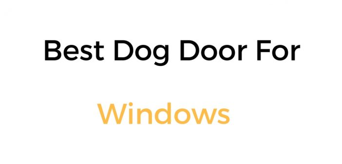 Best Dog Door For Window Sash: Reviews & Buyer's Guide