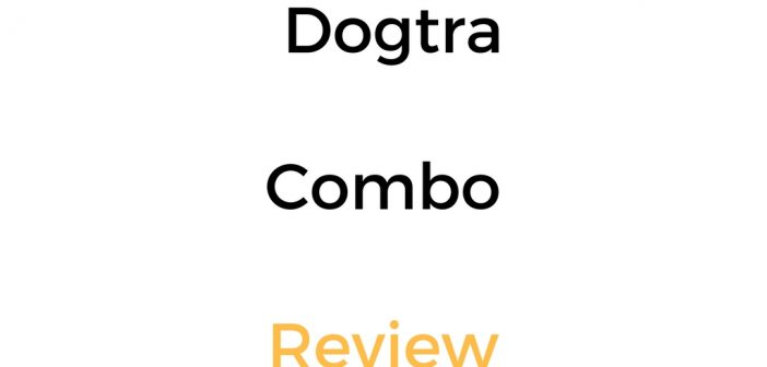 Dogtra Combo Review: Who Is This E Collar For?