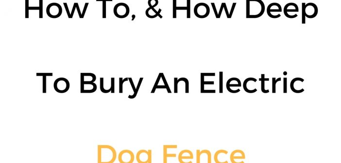 How To, & How Deep To Bury An Electric Dog Fence Wire