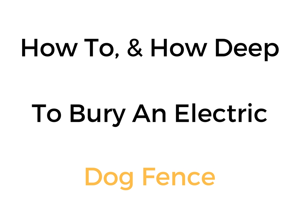 How To Amp How Deep To Bury An Electric Dog Fence Wire