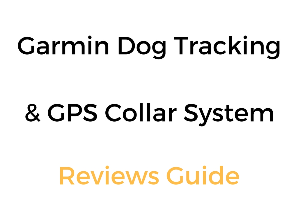 Garmin Dog Tracking & GPS Collar System Reviews Guide