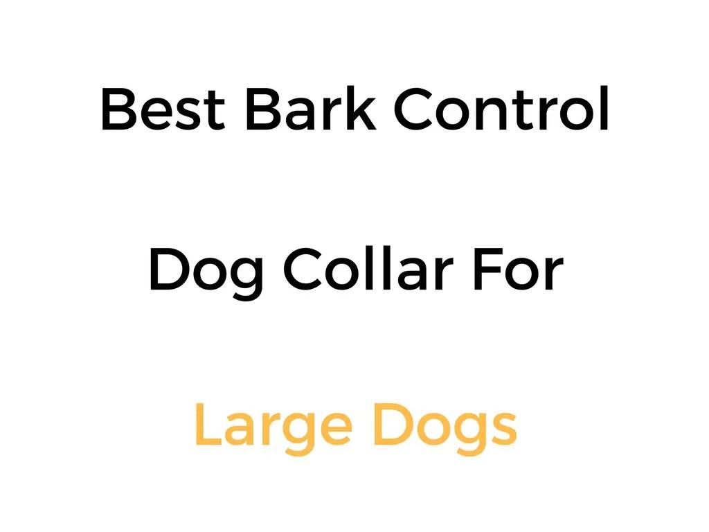 Best Bark Control & No Bark Dog Collars For Medium To