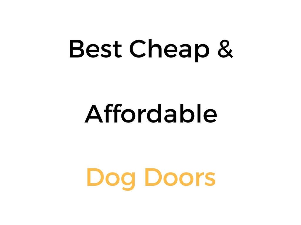 Best Cheap & Affordable Dog Doors: Reviews & Buyer's Guide