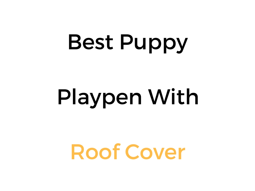 Best Puppy Playpen With Roof Cover
