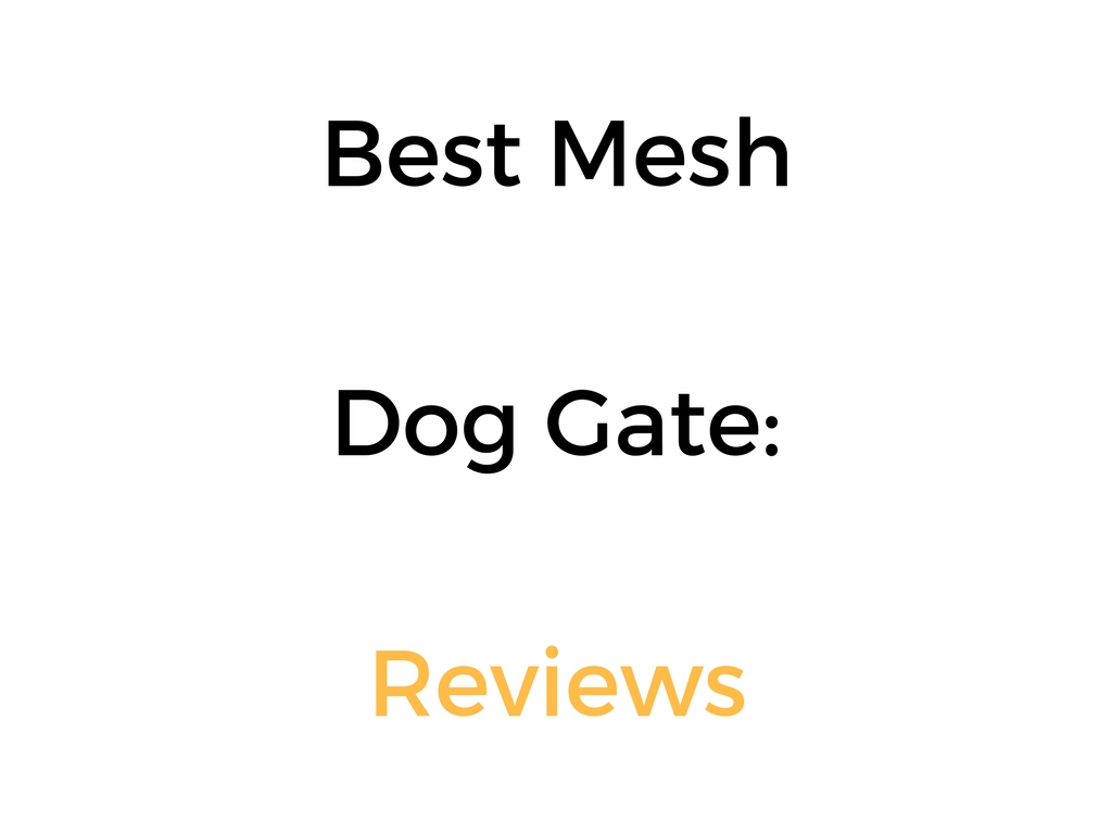 Best Mesh Dog Gate Reviews Amp Buyer S Guide