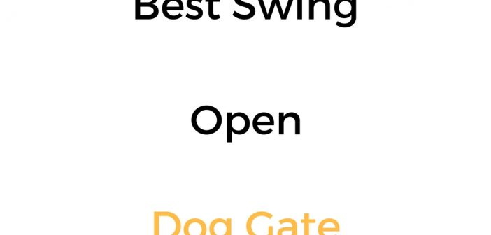 Best Swing Open Dog Gate: Reviews & Buyer's Guide