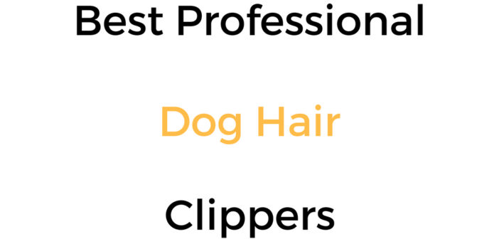 Best Professional Dog Hair Clippers