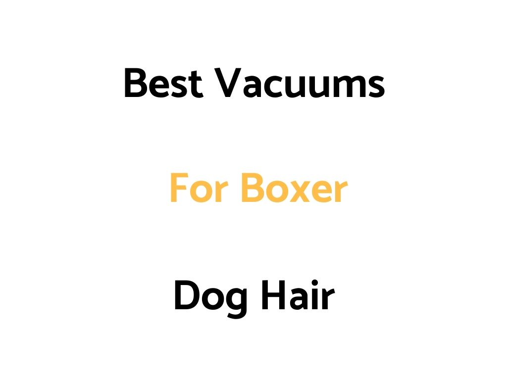 Best Vacuums For Boxer Dog Hair