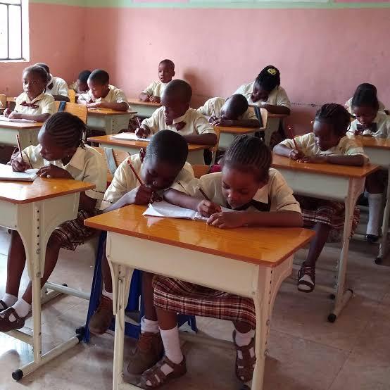 Enugu State Schools resume January 18 - Govt 3
