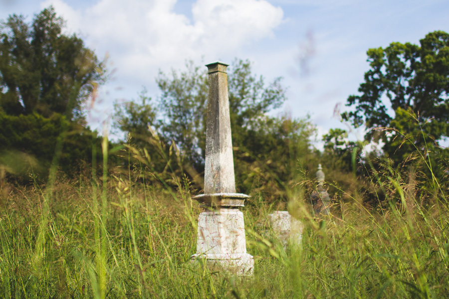 abandoned, cemetery, graveyard, louisville, overgrown cemetery