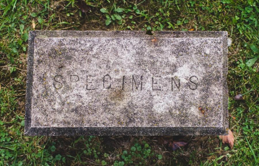 weird headstone