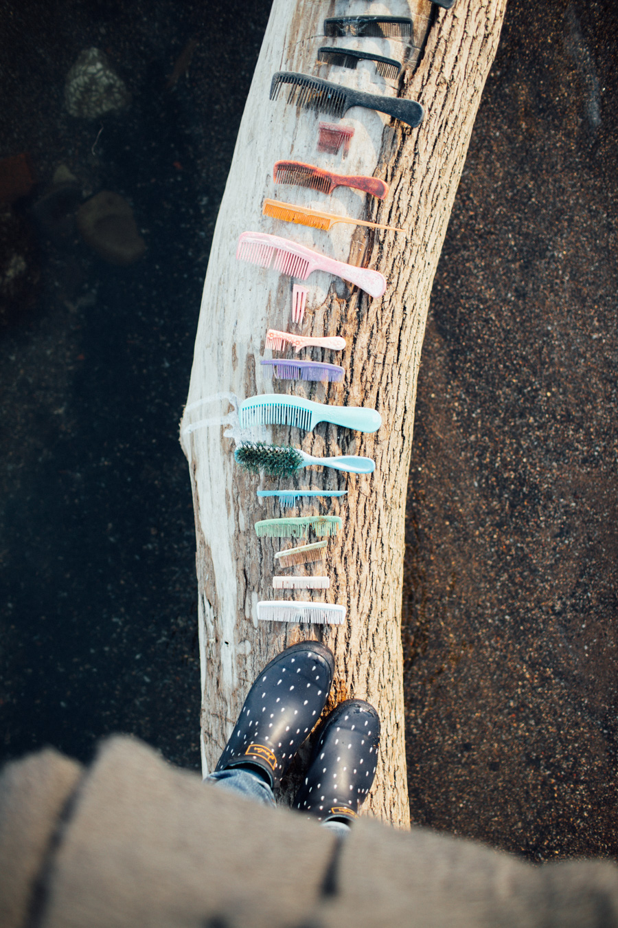 combs found on the beach