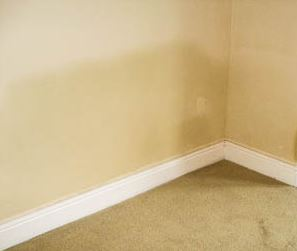 rising damp treatment costs
