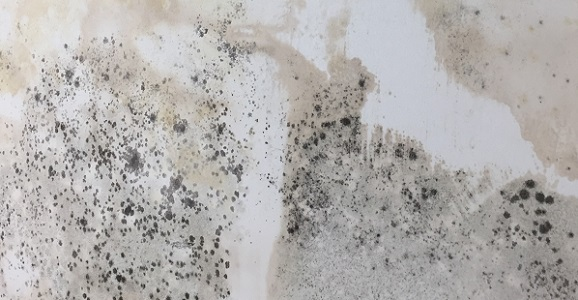 what causes damp behind furniture