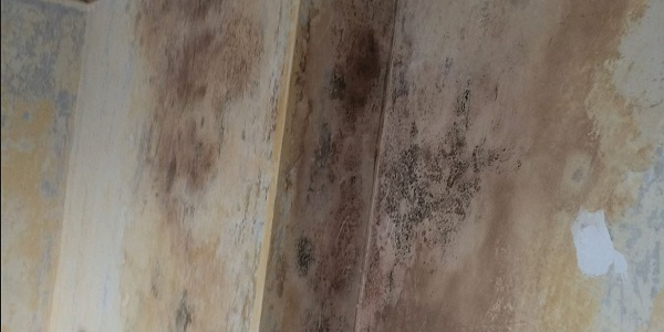 what causes damp on a chimney breast