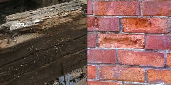 can damp cause structural damage