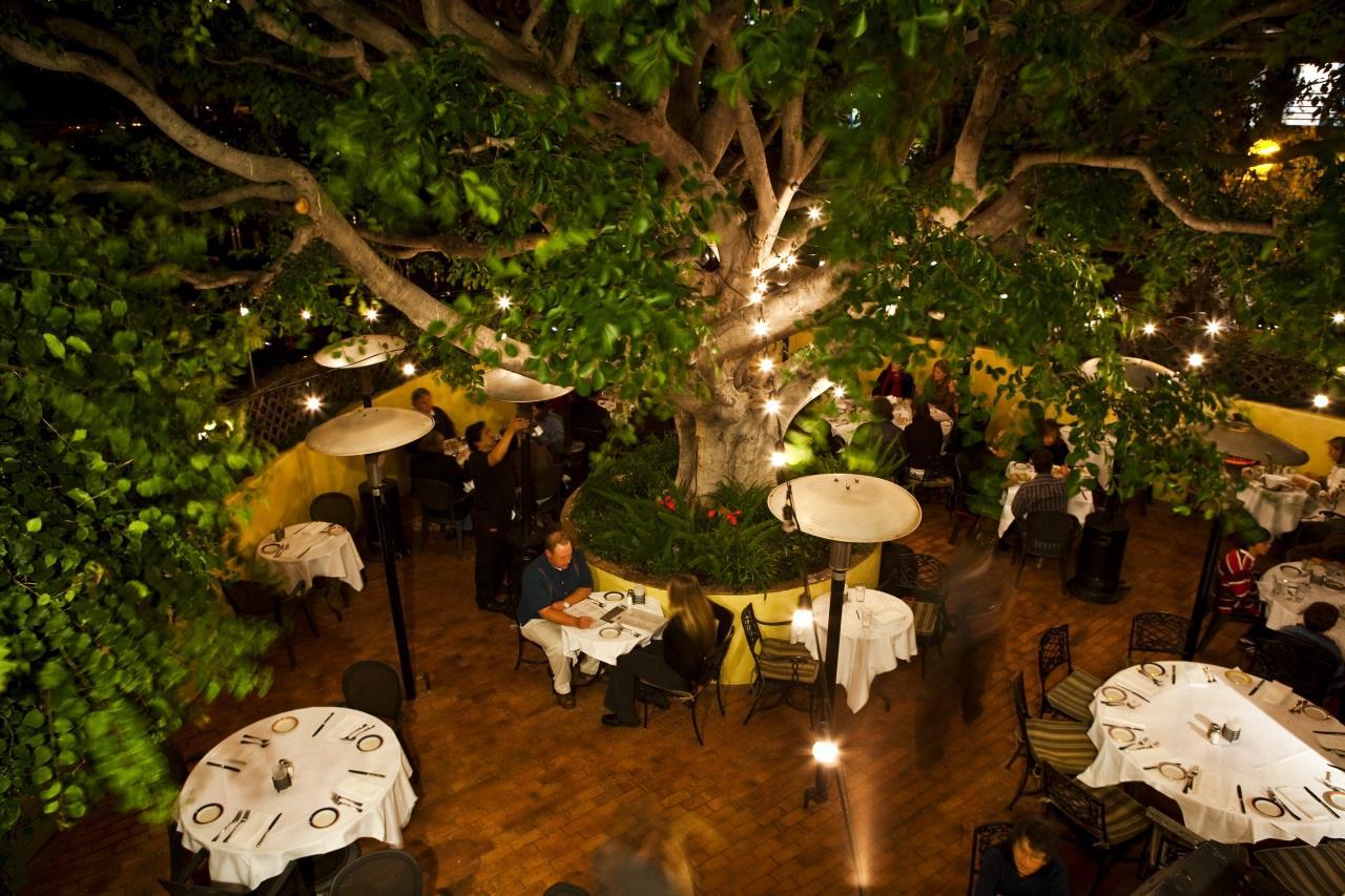 Piatti in La Jolla  One of San Diegos Best Restaurants