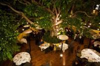 Piatti in La Jolla - One of San Diego's Best Restaurants!
