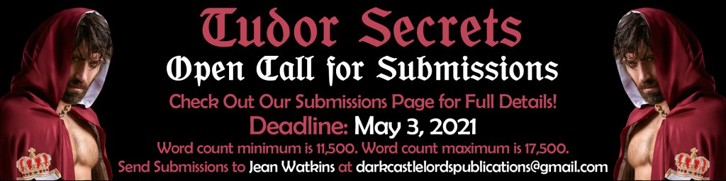 Tudor Secrets Open Call