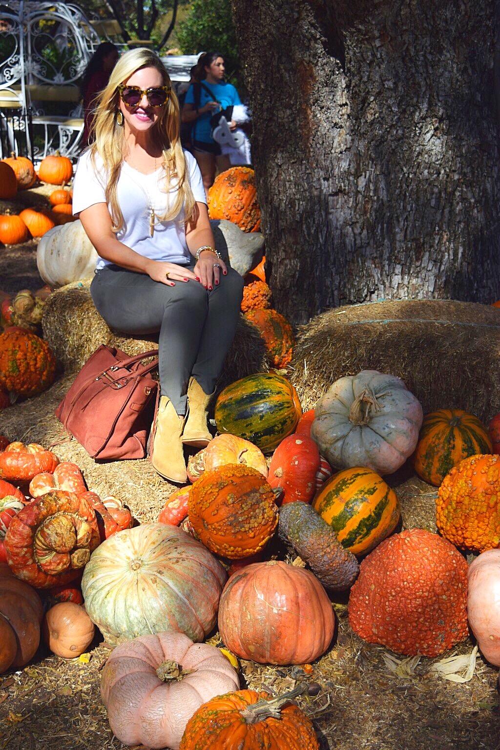 Nicole Kirk | Autumn at the Arboretum