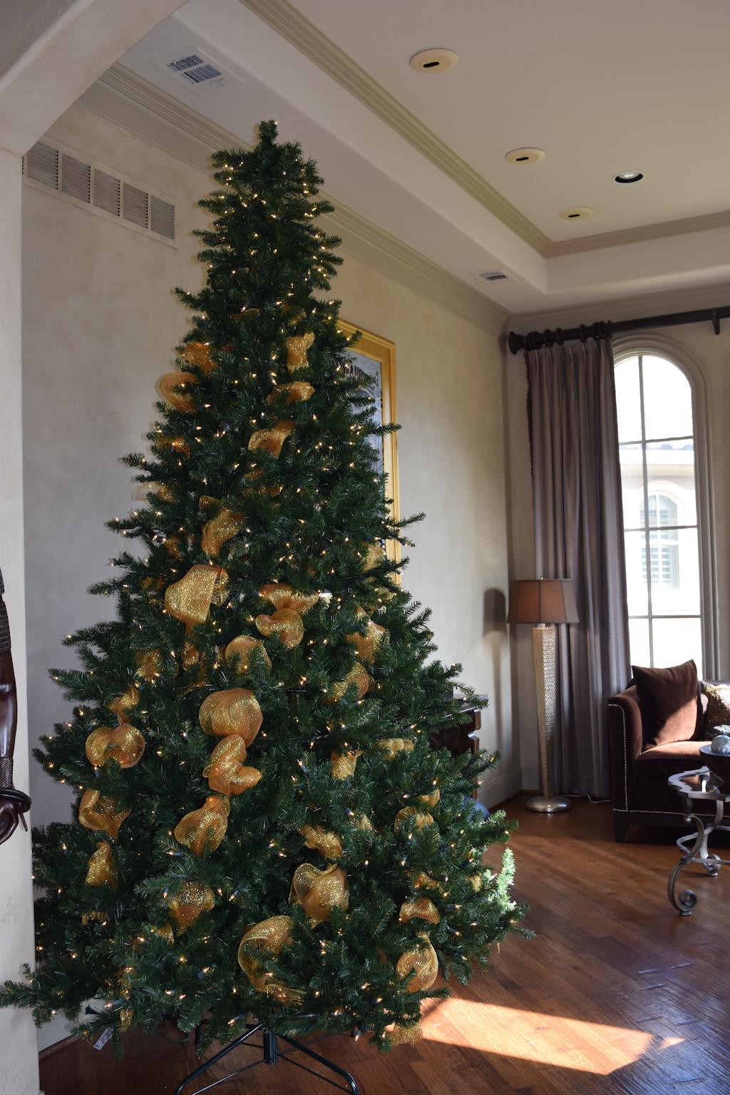Christmas Tree | How To