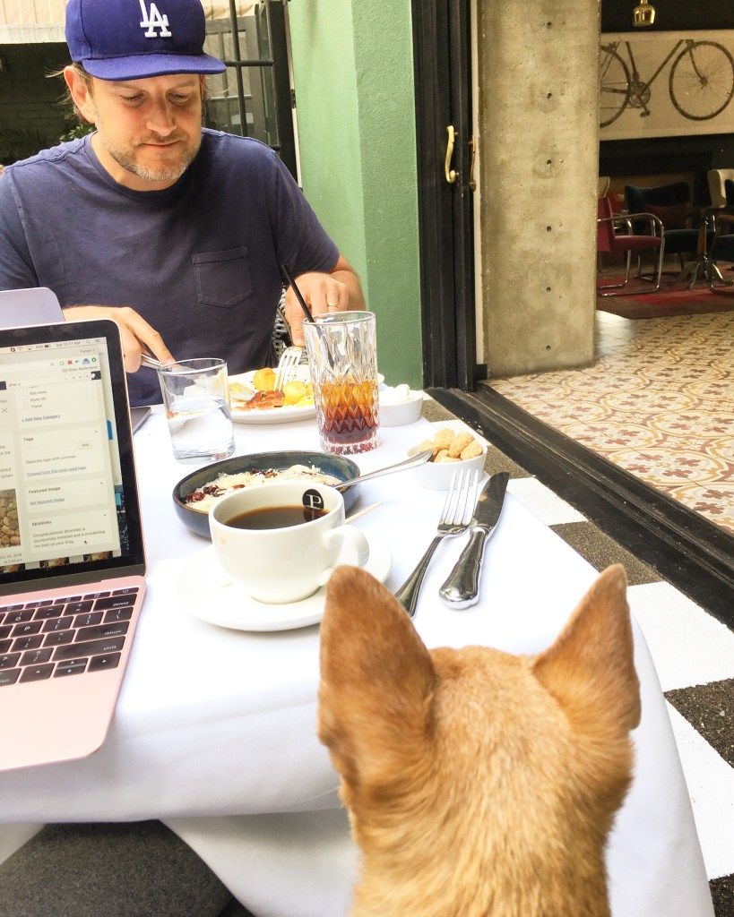 Our favorite dog-friendly restaurants in LA (that are