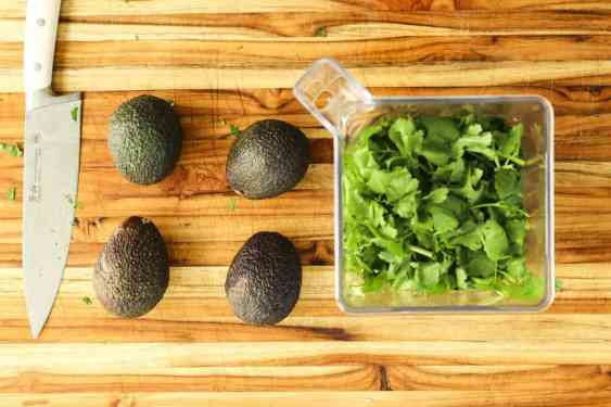 Four avocados sit next to a blender filled with chopped cilantro.