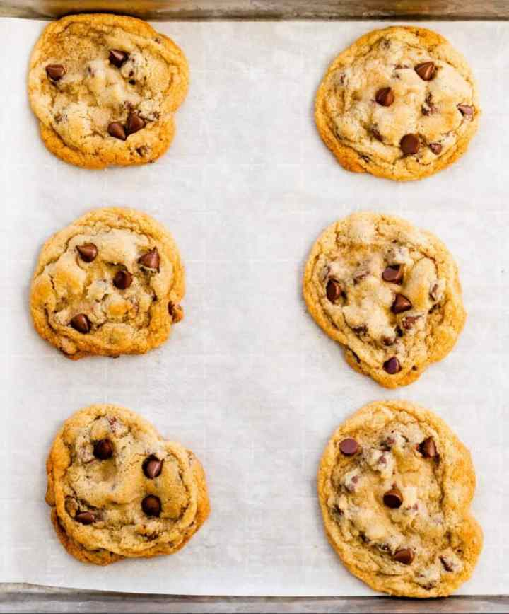 Perfectly baked chocolate chip cookies sit on a baking sheet.
