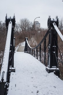 winter walk-12 small